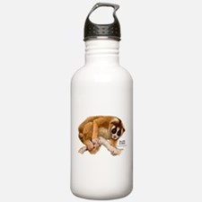 Slow Loris Water Bottle