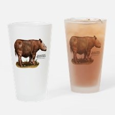 Sumatran Rhinoceros Drinking Glass