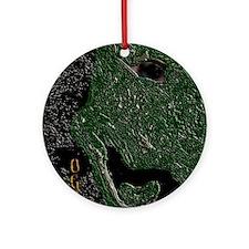 Ogre Monster Kids Ornament (Round)