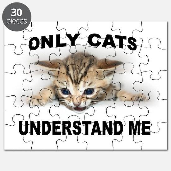 MY PALS Puzzle