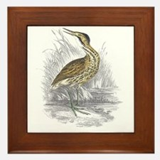 Bittern Bird Framed Tile