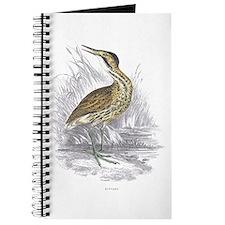 Bittern Bird Journal