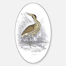 Bittern Bird Oval Decal
