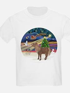 XmasMagic/Shetland Pony T-Shirt