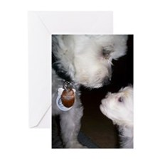 A special moment Greeting Cards (Pk of 10)