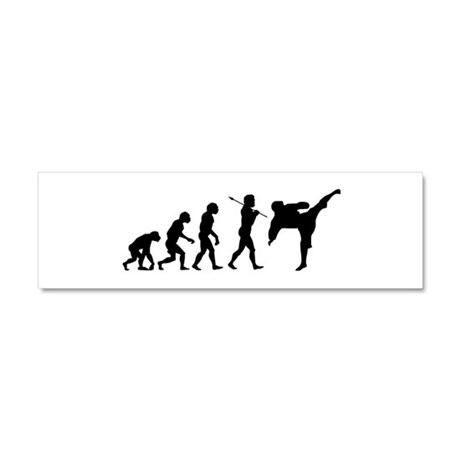 Evolve - Karate Kick Car Magnet 10 x 3