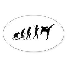 Evolve - Karate Kick Decal