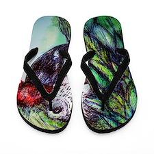 Amazon, Green Parrot, Flip Flops
