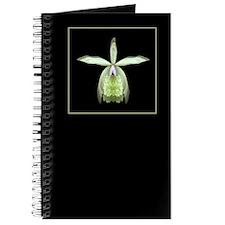 Orchid Epi Journal
