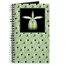 Orchid Epi print Journal