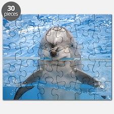 Helaine's Dolphin Puzzle