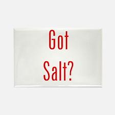 Got Salt? Red Rectangle Magnet