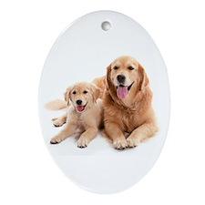 Golden retriever buddies Ornament (Oval)