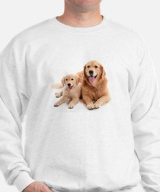Golden retriever buddies Jumper