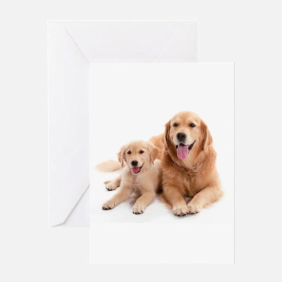Golden retriever buddies Greeting Card