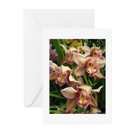 Orchid Grex Greeting Cards (Pk of 10)