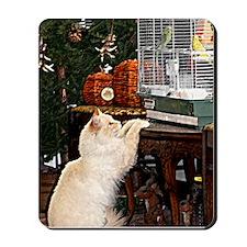 Cat and birds Mousepad