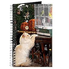 Cat and bird Journal