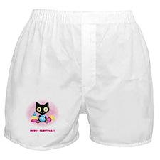 Merry christmas cat Boxer Shorts