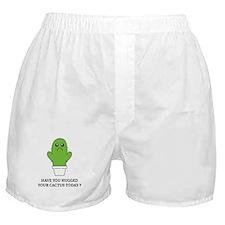 Hugged Your Cactus Boxer Shorts