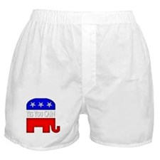 Cute President race Boxer Shorts