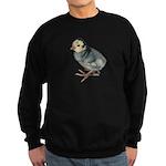 Turkey Poult Blue Slate Sweatshirt (dark)