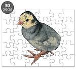 Turkey Poult Blue Slate Puzzle