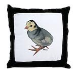 Turkey Poult Blue Slate Throw Pillow