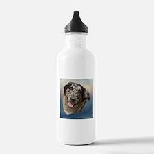 Shiloh the Aussie Water Bottle