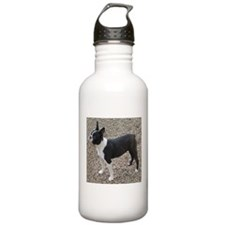 Boston Terrier Pup2 Water Bottle