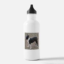 Boston Terrier Pup2 Water Bottle
