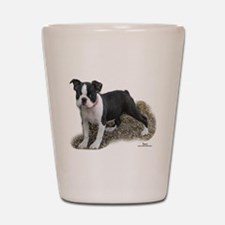 Boston Terrier Pup 1 Shot Glass