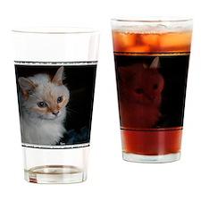 Kekoe, One Great Cat! Drinking Glass
