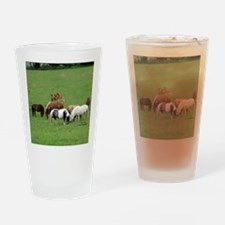 Mini Horses in Pasture Drinking Glass