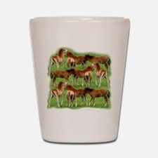 Mini Colts Playing In Field Shot Glass