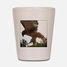 Ostara, Red Tailed Hawk Landi Shot Glass