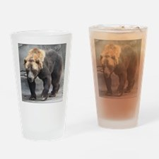 Grizzly Bear Walking Drinking Glass