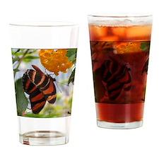 Orange & Black Butterfly Drinking Glass