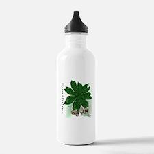 Morels & May Apples Water Bottle