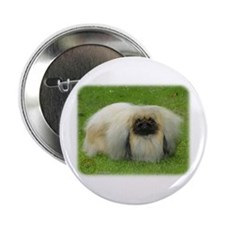 "Pekingese 9W010D-040 2.25"" Button"