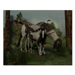 Painted Horse and Foal Small Poster