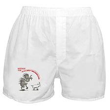 Cute Chupacabra Boxer Shorts