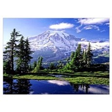 Mount Rainier National Park Poster Wall Art Poster