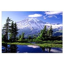 Mount Rainier National Park Poster Wall Art