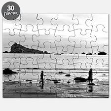 Pebble Beachcombers Puzzle