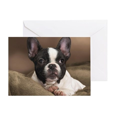 FRENCHIE PUPPY Greeting Card