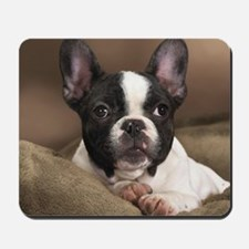 FRENCHIE PUPPY Mousepad