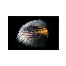 American Flag Eagle Rectangle Magnet (100 pack)