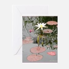Waterlily, photo, art, Greeting Cards (Pk of 10)