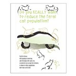 Feral Cats Small Poster